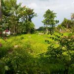 Bán Đất Đẹp Hóc Môn, Thới Tây, Tân Hiệp, 2100M2 Giá Bán Chỉ 8 Tỷ 7