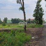 Bán 1000M2 Đất Vườn Đường Vườn Thơm Xã Bình Lợi