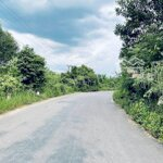 Đất Mặt Tiền Tỉnh Lộ 8 Khánh Vĩnh - Khánh Hoà