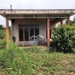 Cho Thuê Nhà Vườn Xã Phú Hưng -Tp. Bến Tre