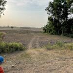 Chính Chủ Cần Bán Đất Giá Rẻ Ở Hòa Thuận – Tp Trà Vinh – Tỉnh Trà Vinh
