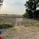 Bán Đất Giá Rẻ Ở Hòa Thuận – Tp Trà Vinh