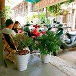 Chính Chủ Sang Quán Cafe Quận Tân Bình