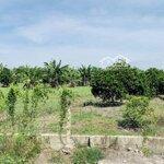 Đất Vườn Củ Chi Hai Lô Liền Kề 608M2 Giá Rẻ 840Tr