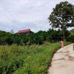 Bán Đất Lương Sơn Hòa Bình Dt3350M2 View Cánh Đồng Siêu Đẹp