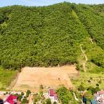 ️️ Mở Bán Lô Đất Tại Yên Bình, Thạch Thất: 1520M2 Mặt Tiền 20M. Gần Hồ. Giá Hấp Dẫn 0988854435