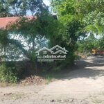 Cần Bán Mảnh Đất Tại Thôn Phú Thịnh – Xã Minh Phú