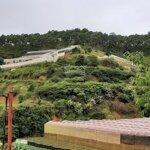 Cần Bán Gấp Đất Nn Giá Rẻ Tại Trại Mát, Đà Lạt 1800M2, Giá 1.3 Tỷ