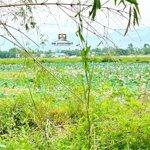 Phong Điền, Hiền Lương, Vườn Dâu Giá Chỉ 6Xx Tr Đường 7M