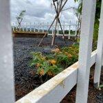Thua Cờ Bạc Cần Sang Lại Lô Đất 2 Mặt Tiền Đường Sổ Sẵn Full Thổ Cư Có Sẵn Vườn