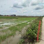 Bán đất mặt tiền đanl 3m kênh xáng Hoa thuận. 10x30