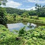 1100M2 100M Ont , View Đồng , Yên Mông Tp Hoà Bình