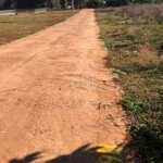 Bán đất hẻm tỉnh lộ 8, (khu công nghiệp tân an)