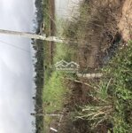 Cần bán gấp 1,2 sào đất nuôi trồng thuỷ sản km19