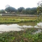đất sinh thái 1200m2, bám suối 50m, view ruộng tại lương sơn hòa bình cần bán gấp