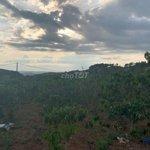Cần bán lô đất rộng 20000m2 tại nam hà, lâm hà