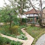 Biệt thự sân vườn đẹp 5 phòng ngủ gần nhà thờ lãnh địa đức bà p6 đà lạt – bđs đất xanh