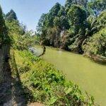 Bán khu đất 6200m2 ven sông xã tân bình, h. vĩnh cửu. có ao cá,vườn bưởi đang thu hoạch, giá đầu tư