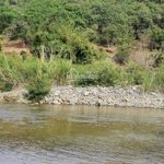 Bán 3150m2 đất giáp suối to - có 45m mặt tiền - cách đèo bảo lộc 8km- hợp nghĩ dưỡng