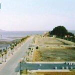 Bán đất liền kề view biển cạnh flamingo hải tiến