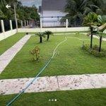 Bán nhà biệt thự sân vườn