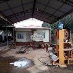 Cho thuê nhà xưởng mặt đường huyện sóc sơn
