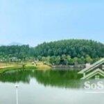 Bán gấp lô đất nền dự án venus by flamingo,diện tích250m2, giá bán 2,55tỷ. liên hệ: 0969.633.422