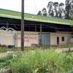 Cần bán kho xưởng diện tích 3613 m2