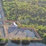 Bán đất đất vew sông phú đôngdiện tích1400m tặng nhà vườn đường xe hơi tới nơi liên hệ: 0987124098