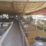Bán đất trang trại 2 mặt tiền sau ubnd xabình minh