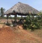 Bán 3 hecta đất làm khu nghỉ dưỡng tại định quán
