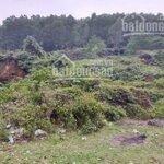 Bán 1080m2 đất nghỉ dưỡng tại yên trung- thạch thất- hà nội với giá bán 750 triệu. liên hệ: 0339689555