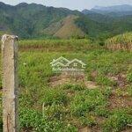 Bán lô đất vườn giá rẻ