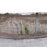 Cần bán gấp lô đất ở đức hòa - long an, gần tl823.