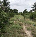 Bán miếng vườn gần 5.600m2 đất lên bờ trồng chanh-