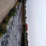 Bán đất gần khu công nghiệp long giang