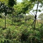 Lô đất siêu siêu đẹp mặt tiền đường 2 làn tại kqh bàu vá 1 với giá cực kỳ ưu đãi so với thị trường