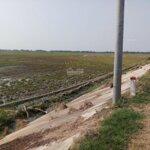 đất ruộng tuyến tránh quốc lộ 30