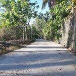 Nền lớn lộ bờ đắp giá chỉ 1, 2 triệu/m