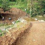 Chính chủ cần bán gần 2ha đất trồng rừng và 3000m đất thổ cư giá cực rẻ chỉ 3,5tỷ có suối chạy quanh