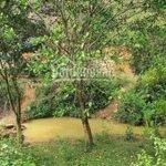 Chuyển nhượng 5000 m2 đất thổ cư tại huyện kỳ sơn tỉnh hòa bình