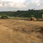 Bán đất xây biệt thự 200m2 đất thổ cư xây dựng tự do.