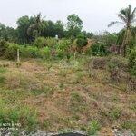 đất gần kcn trảng bàng phù hợp định cư lâu dài