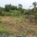 Bán đất gần kcn trảng bàng phù hợp định cư lâu dài