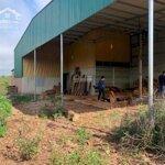 Bán nhà riêng tại xã thuận hạnh, huyện đắk song, đắk nông