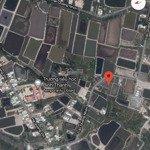 đất đường ec, bình khánh,140m2 thổ cư toàn bộ,giá 1 tỉcó thương lượngchính chủ. 0907579717