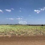 Bán 10ha đất caosu làm trang trại
