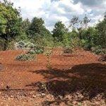 đất phân lô km12 gần dự án cao tốc nha trang