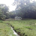 Bán lô đất làm trang trại sổ liên chiểu