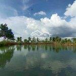3 sào nn odt có hồ view ruộng, có nhà thôn eaking